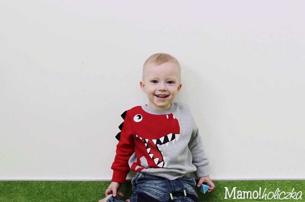 chłopczyk, dziecko w żłobku, żłobek czy niania, bluza z dinozaurem, F&F, ubranka dla dziecka